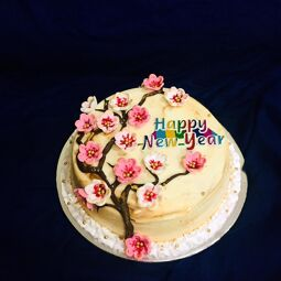 Bittersweet cakes are good quality and tasty cakes. All our cakes are baked in most hygienic way in our kitchen. All types cakes are available.